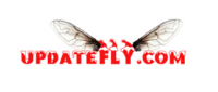 Updatefly